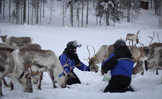 lapland weekend