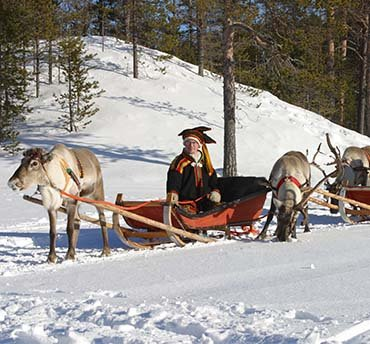 rendiersafari lapland